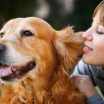 Τα ζώα ως σύντροφοι… και οχι μόνον